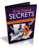 Thumbnail Blog Flipping Secrets - eBook and Videos with MRR